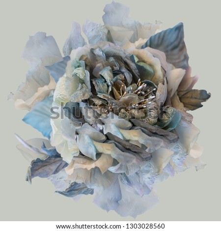 Greeting card of silk rose, beautiful blue gray rose on a background, Flower on a background. Floral vintage pattern, print. Toned Image does not focus. #1303028560