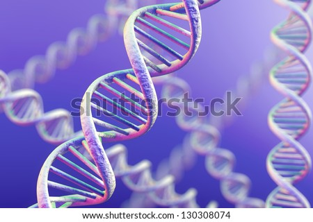 DNA double helix. High resolution 3d rendering. #130308074