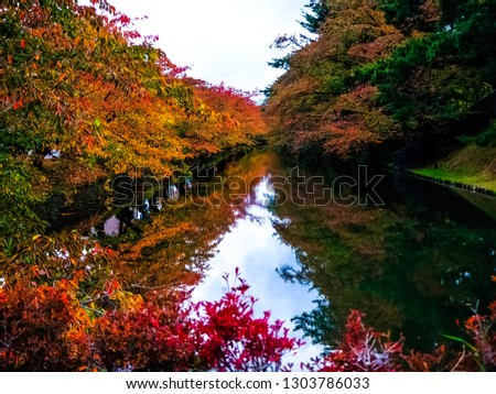 Reflection of the autumn #1303786033
