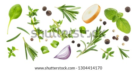 Different spices and herbs isolated on white background, basil leaf, thyme, green onion, black pepper, rosemary, top view #1304414170