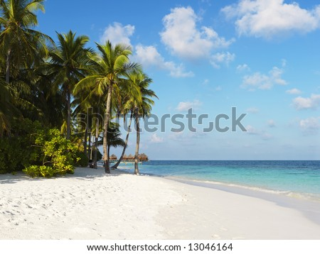 Tropical beach at hotel resort #13046164