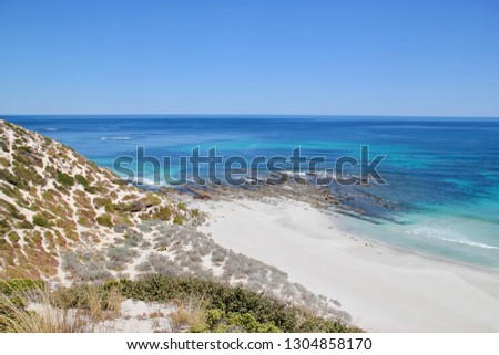 Beach with sea lions at Seal Bay Conservation Park, Kangaroo Island, South Australia #1304858170