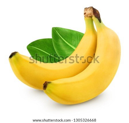 Bunch of bananas isolated on white background. Bananas with leaves Clipping Path #1305326668