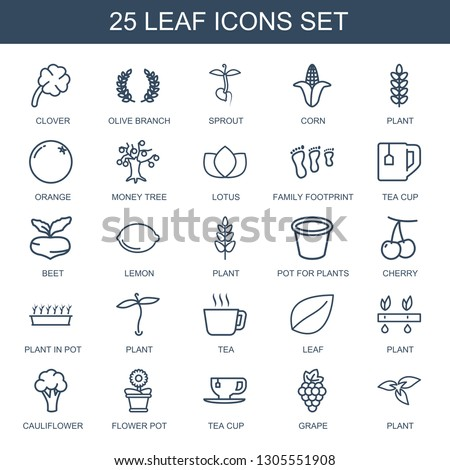 25 leaf icons. Trendy leaf icons white background. Included outline icons such as clover, olive branch, sprout, corn, plant, orange, money tree. leaf icon for web and mobile. #1305551908