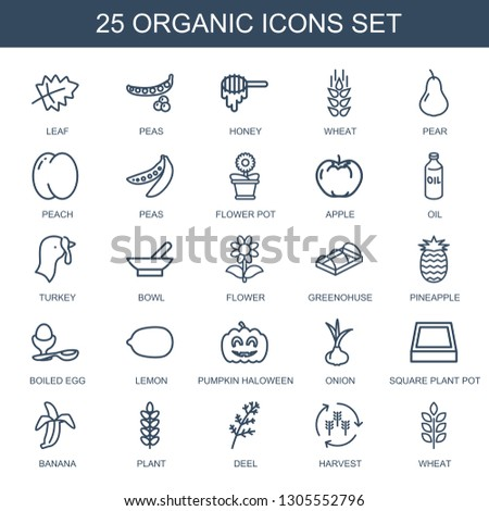25 organic icons. Trendy organic icons white background. Included outline icons such as leaf, peas, honey, wheat, pear, peach, flower pot, apple. organic icon for web and mobile. #1305552796