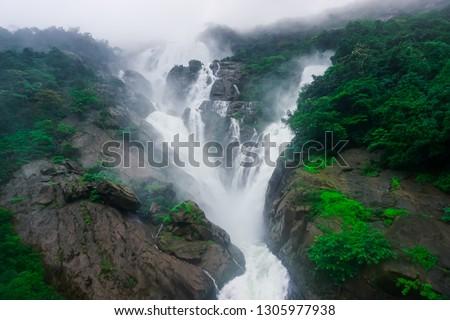 The huge waterfall Dudsagar in the wild jungle. Karnataka, India