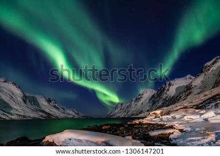 Amazing Aurora Borealis in North Norway (Kvaloya), mountains in the background #1306147201