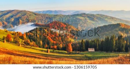 autumn sunrise in the Carpathian mountains. foggy morning