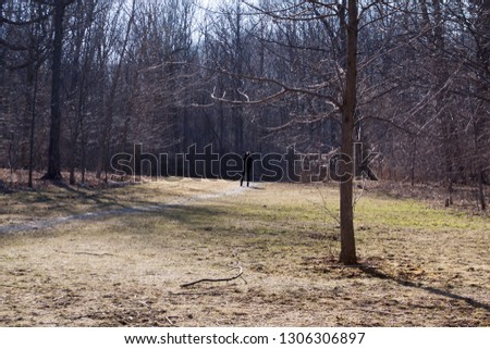 Lasalle, Quebec - April, 13, 2016 - A lone photographer stands out among the bare trees and landscape in Angringnon Park, on a bright, sunny day #1306306897