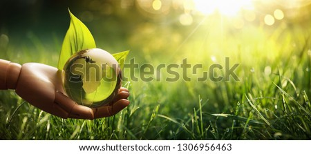 Environment Concept Green Planet in Your Hands. Save Earth #1306956463