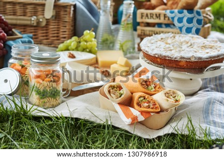 Delicious picnic food served outdoors on a rug with vegetable pickles, fresh grapes, cheese, wraps and cake for dessert
