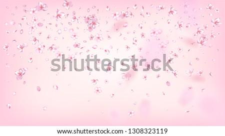 Nice Sakura Blossom Isolated Vector. Summer Flying 3d Petals Wedding Design. Japanese Funky Flowers Wallpaper. Valentine, Mother's Day Tender Nice Sakura Blossom Isolated on Rose #1308323119