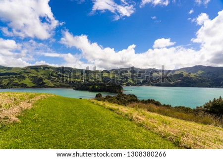 view from the onawe track in New Zealand, amazing ocean bay in akaroa New Zealand, onawe walkway with beautiful nature and blue water, great New Zealand nature photography, nature background #1308380266