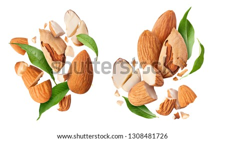 Set with fresh raw almonds. Flying in air fresh raw whole and cut almonds  isolated on white background. Concept of Almonds is torn to pieces close-up. High resolution image #1308481726