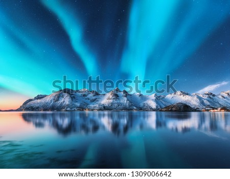 Northern lights and snow covered mountains in Lofoten islands, Norway. Aurora borealis. Starry sky with polar lights and snowy rocks reflected in water. Night winter landscape with aurora, sea. Nature #1309006642