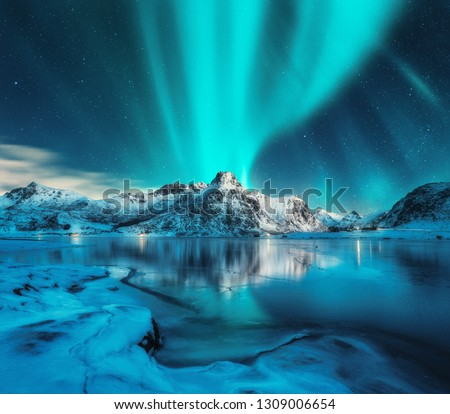 Aurora borealis over snowy mountains, frozen sea coast, reflection in water at night. Lofoten islands, Norway. Northern lights. Winter landscape with polar lights, ice in water. Starry sky with aurora #1309006654