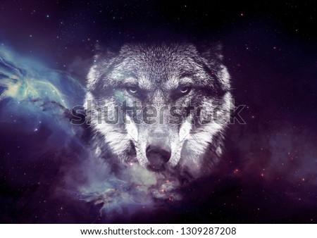 Galaxy Wolf face  wallpaper