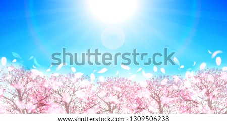 Cherry Blossom spring flower background #1309506238
