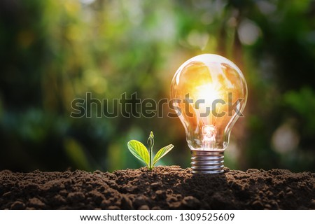lightbulb with small plant on soil and sunshine. concept saving energy in nature #1309525609