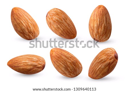 almond raw collection fly on white  isolated   #1309640113