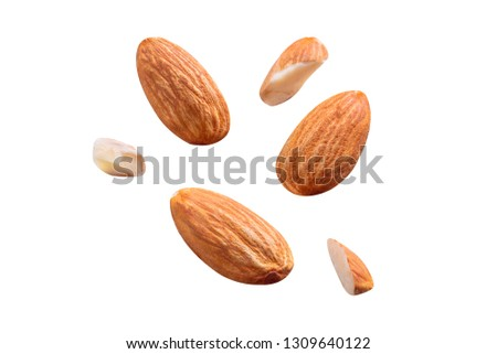 almond raw coolection fly on white