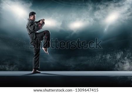 taekwondo action poses in stadium background. Royalty-Free Stock Photo #1309647415