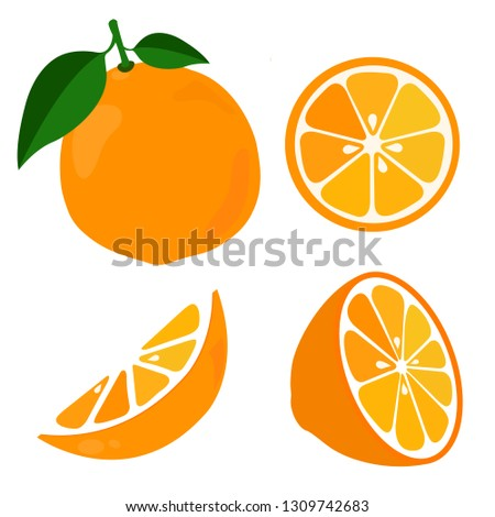 Bright vector set of colorful half, slice and segment of juicy orange. Fresh cartoon oranges on white background. #1309742683