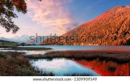 Wonderful Alpine Landscape in Sunny day. Colorful Autumn scene #1309909549