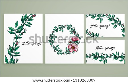 Vector flower color collection of cards and business cards with wild rose flowers.  WILD ROSE #1310263009