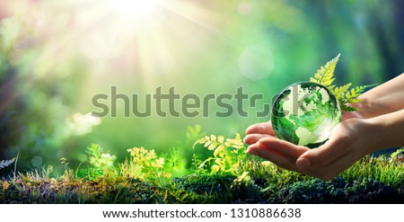 Hands Holding Globe Glass In Green Forest - Environment Concept - Usa elements of this image furnished by NASA  Royalty-Free Stock Photo #1310886638