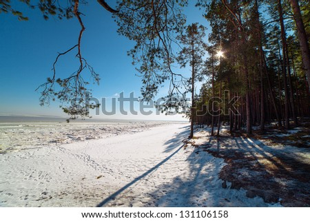 Sunshine at Baltic sea in winter time. #131106158