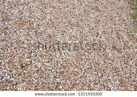 Smooth and polished. Pebble on shingle beach. Colorful small pebble and stone texture. Pebble background. Gravel pebble or rock fragments. Weathering and erosion of rocks. #1311410300