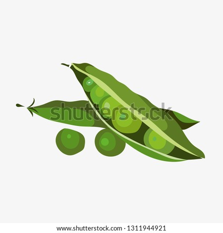 Peas vector. Green peas isolated on white background. Vector illustration of fresh food in a flat style. Icon, banner. Royalty-Free Stock Photo #1311944921