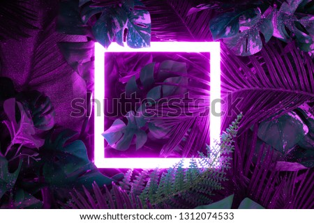 Creative fluorescent color layout made of tropical leaves with neon light square. Flat lay. Nature concept Royalty-Free Stock Photo #1312074533