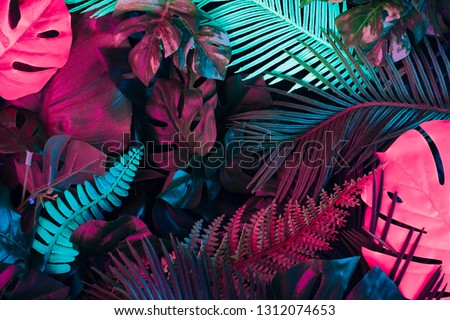 Creative fluorescent color layout made of tropical leaves. Flat lay neon colors. Nature concept. #1312074653