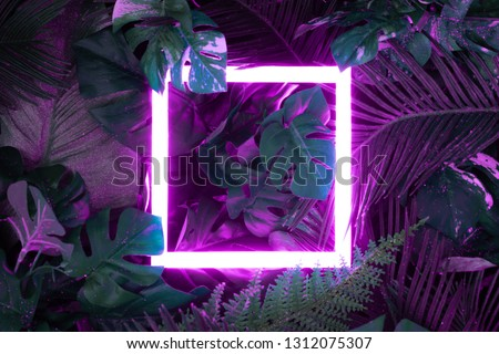 Creative fluorescent color layout made of tropical leaves with neon light square. Flat lay. Nature concept #1312075307