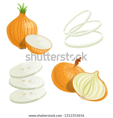 Cartoon brown or yellow onions set. Whole unpeeled, half, onion rings and slices. Fresh farm market vegetables. Vector illustrations isolated on white background. Royalty-Free Stock Photo #1312353656