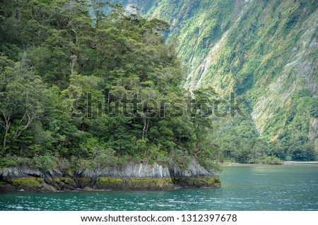 Milford Sound /Piopiotahi is a fiord in the south west of New Zealand's South Island within Fiordland National Park, Piopiotahi (Milford Sound) Marine Reserve, and the Te Wahipounamu World Heritage.  Royalty-Free Stock Photo #1312397678