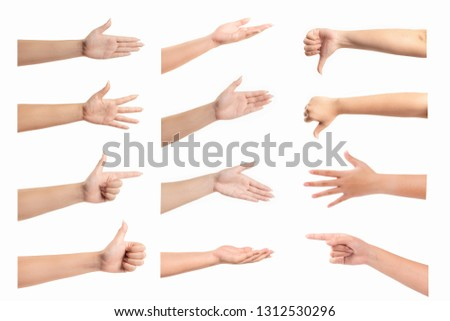 Set of Woman hand isolated on white background. #1312530296