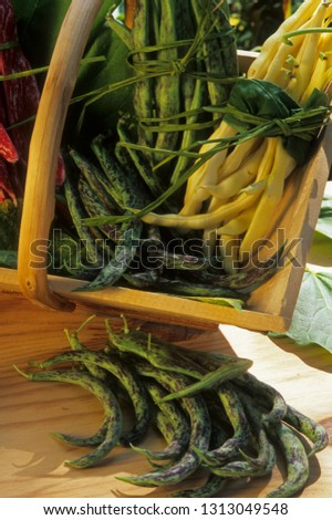 Pods of beans #1313049548