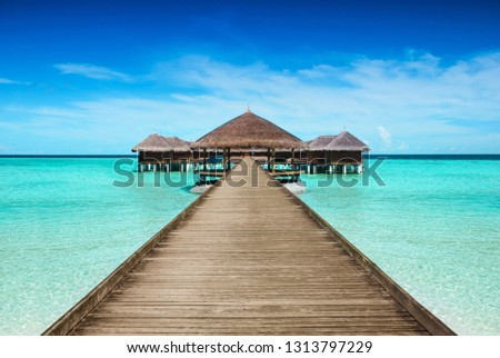 Hotel with landing stage at the seychelles,mauritius or maldives. Concept for a vacation in luxury. #1313797229