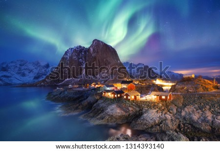 Aurora borealis on the Lofoten islands, Norway. Green northern lights above ocean. Night sky with polar lights. Night winter landscape with aurora and reflection on the water surface. Norway-image #1314393140