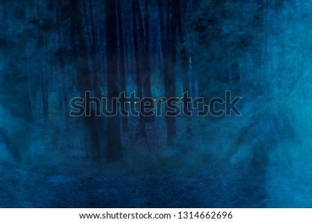 night forest covered with mystical fog in the bushes orange eyes of wild animals sparkle concept of wilderness and wilderness #1314662696