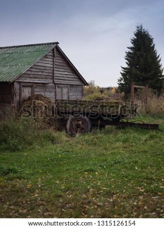 Hay harvesting in autumn. #1315126154