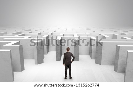 Businessman choosing between entrances in a middle of a maze #1315262774