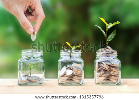 Money savings, investment, making money for future, financial wealth management concept. A man hand holding coin over stacked coins in glass jar and growing tree plant depicts Fund growth and wealth. #1315357796