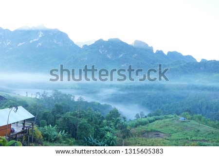 Fog in the morning at Doi Chiang Dao, Thailand, abundance evergreen forest and foggy, Space for text in template, Travel and Ecological concept #1315605383