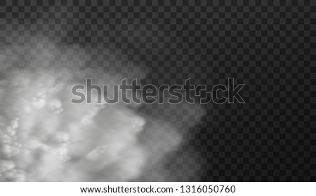 Vector illustration of white smoky clouds  isolated on transparent background #1316050760