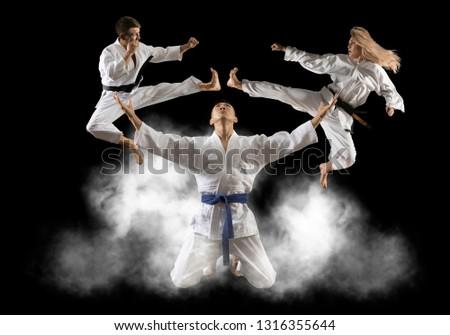 Three martial arts masters, karate, taekwondo practice.  #1316355644