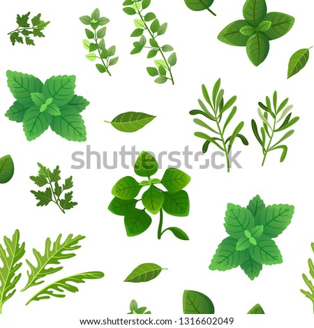 Spice seamless pattern. Food herbs and spices oregano green basil mint spinach coriander parsley dill and thyme. Vector endless texture #1316602049